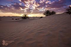 (Azaga ) Tags: canon desert mark ii 5d libya shara deset  5d2