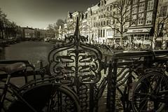 Amsterdam (julesnene) Tags: travel netherlands amsterdam bike cycling canal europe nl noordholland julesnene juliasumangil canon7dmarkii canon7dmark2