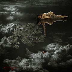 Dreamer's Reach (ChalaJan) Tags: portrait cloud reflection art dark pond waterlily sleep surrealism dream surface dreams reach dreamapple