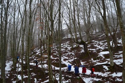 Senderismo por los Montes de Arrupia en Ojacastro y Valle de Iguareña en Valgañón Fotografía María Jesús (13)