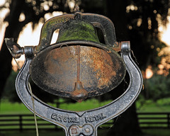 Bell (mykadog) Tags: trees green fence moss outdoor artsy oldest
