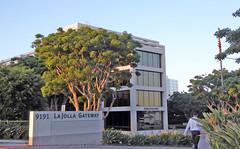 University City 4-16-16 (13) (Photo Nut 2011) Tags: california sandiego universitycity brightscope