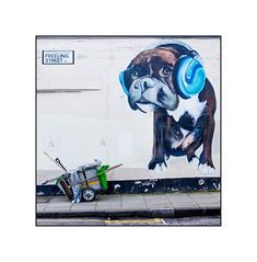 Graffiti (Louis Masai), North London, England. (Joseph O'Malley64) Tags: uk greatbritain england dog streetart london dogs tarmac wall graffiti mural britain pavement render gradient headphones british walls cart staffordshirebullterrier handcart doubleyellowlines incline wallmural northlondon muralist streetcleansing granitekerbing roadsweeperscart