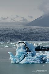 shs_n8_018512 (Stefnisson) Tags: ice berg landscape iceland glacier iceberg gletscher glaciar sland icebergs jokulsarlon breen jkulsrln ghiacciaio jaki vatnajkull jkull jakar s gletsjer ln  glacir sjaki sjakar stefnisson