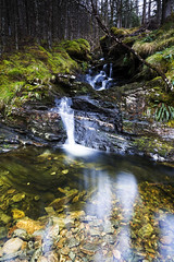 Allt na Criche (ca2cal) Tags: water rock forest scotland waterfall highlands stream waterscape alltnacriche