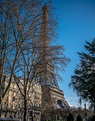 La Tour Eiffel - Eiffel Tower (y.caradec) Tags: trees mars paris france tree tower clouds lumix march europe ledefrance tour eiffeltower eiffel arbres toureiffel 16 nuages eiffelturm arbre iledefrance immeuble 2016 gx7 dmcgx7 lumixgx7 march2016 mars2016