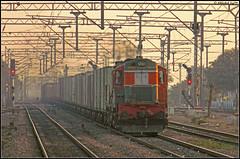 LDH WDM-3A (Abhishek Jog) Tags: from ast with through chugging towards ldh loaded based pwl ludhiana bvh concor 16355 consist wdm3a palwal asaoti ballabhgarh