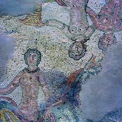 Catelleone di Suasa - Mosaico (www.turismo.marche.it) Tags: arte mosaico marche ancona anfiteatro storia mosaici scavi provinciadiancona reperti castelleone castelleonedisuasa destinazionemarche
