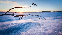 Vernal equinox (Jarkko T) Tags: blue winter sun lake sunrise finland spring vernal kuopio equinox kallavesi
