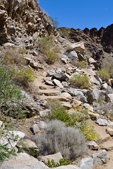 Steps at Tahquitz Canyon (Blue Rave) Tags: palmsprings california tahquitzcanyon tahquitzcanyontrail hike hiking trail nature 2016 park path pathway steps mountains