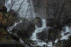 Pissevache (bulbocode909) Tags: nature eau suisse arbres cascades rochers valais montagnes vernayaz pissevache forts