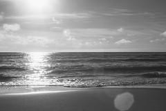 """I Wish U Heaven"" (Joe Effendi) Tags: sea blackandwhite bw sunlight seascape reflection beach nature monochrome 35mm mono blackwhite spring fuji outdoor horizon m42 flare april bnw denhelder beachscape 2016 effendi vintagelens makinon fujifilmxe1 makinonauto35mmf28"