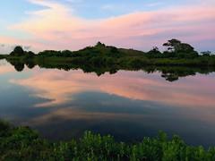 4-21-16 Sunset at Galveston Island State Park (ThursdayGirl) Tags: sunset galveston reflection pinkclouds galvestonislandstatepark