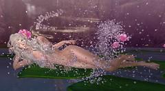 We are the Water in Serenity (gwen.enchanted) Tags: serenity ikon maitreya junbug bentbox analogdog catwa naminoke lumae ff2016