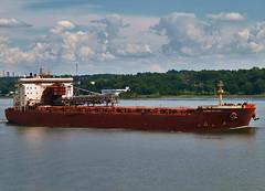 Algoma Integrity (Nicober!!!) Tags: canada river ship quebec cargo stlawrence stlaurent carrier integrity algoma fleuce selfloader vraquier