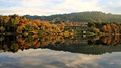 Perfectly mirrored by Nature (CarlaFrancisco) Tags: winter reflection tree folhas portugal water leaves rio gua espelho canon river eos mirror photo flickr foto fallcolors foliage photograph fotografia dslr inverno reflexion rvore reflexo cf fallcolours viseu northernhemisphere folhagem greatphotographers efs1785mm efs1785 canonefs1785mmf456isusm 40d penalvadocastelo coresdeoutono canoneos40d canon40d digitalsinglelensreflex carlafrancisco takenindecember riodo hemisfrionorte infinitexposure takenin2015 copyright2015carlafranciscoallrightsreserved