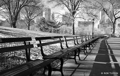 Central Park Benches Winter Sun Path New York, Manhattan, USA, America (rtmotorphotos) Tags: park city trees shadow blackandwhite usa newyork monochrome america canon bench eos vanishingpoint manhattan central perspective sigma 18250 canon7d centralparkbencheswintersunpathnewyork