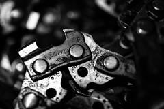Chains and Chains (Daniel C. Brunner) Tags: blackandwhite still chainsaw chain bnw stihl stihlchainsaw