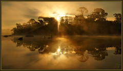 In the beginning (WanaM3) Tags: park trees mist seascape reflection water fog clouds sunrise golden mood texas sony ngc bayou rays pasadena goldenhour bayareapark clearlakecity a700 armandbayou sonya700 wanam3