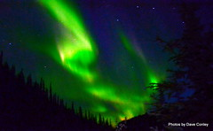 northern-lights-Liard-river-trip