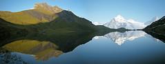 The SSUSY* redivivus (Alpine Light & Structure) Tags: autumn alps reflection alpes schweiz switzerland suisse alpen berneroberland berneseoberland bachalpsee