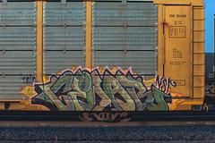 CEDAR (◀︎Electric Funeral▶︎) Tags: railroad art digital train canon photography graffiti midwest nebraska paint railway iowa fremont kansascity railcar missouri cedar lincoln kansas traincar omaha graff aerosol freight desmoines nsf freighttrain autorack rollingstock councilbluffs benched benching xti freighttraingraffiti fr8train fr8heaven