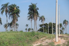 Veleiros-do-Piracicaba-23 (veleirosdopiracicaba2015) Tags: brasil casa sãopaulo chacara anhembi empreendimento veleirosdopiracicaba