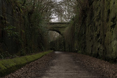 Photo of Wirral Way