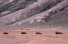 Tassili n' Ajjer   Jan 2004 (Euphemia G) Tags: africa sahara trekking trek algeria desert djanet tassilinajjer