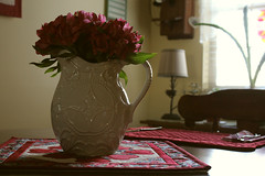vase of pinkness (lizdresden) Tags: life pink love nature canon day vase valentines centerpiece