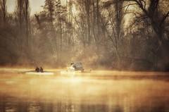 Am Main... (hobbit68) Tags: old sunset canon river boats wasser nebel outdoor alt frankfurt main boote ufer fluss sonne bltter baum sonnenschein