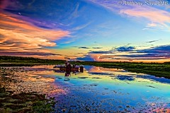 Reflections (anthonysay795) Tags: sunset love water weather clouds reflections photography colours dam australia explore outback amateur cannon6d