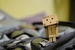 Hai.. Im Danboard..welcome 2016 (TwOoNeOnE) Tags: toy toys sony sigma brunei bruneidarussalam a6000 danboard artlens 35mm14art danboardstory