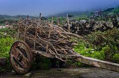 Vida de campo (nfaraldos) Tags: portugal fog islands countryside carro niebla islas azores aores