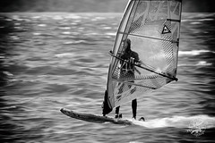 Windsurfing (FunkyPepper) Tags: bw white black water sport windsurfing