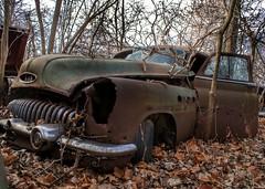 DSC08573.ARW-01 (juice95m3) Tags: abandoned rust vintagecar automobile junkyard oldcars classiccars