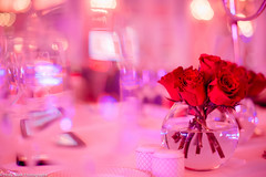 Roll out the Red 2016 (British Heart Foundation) Tags: red roses out roll rhodes bhf centerpieces hayford