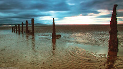 Caldy Beach at Sunset (3 of 6) (andyyoung37) Tags: sunset england seaweed beach seaside rocks unitedkingdom birkenhead gb caldy woodenposts thewirral