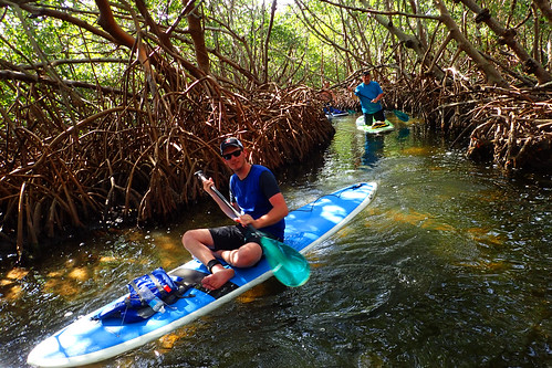 3_5_16 Kayak Paddleboard Tour Sarasota FL 09