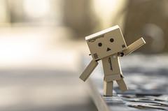 Balance (Stroget) Tags: brown white macro toy nikon focus bokeh balance danbo d5100