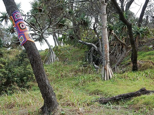 Guerrilla Knitting Goes Bush