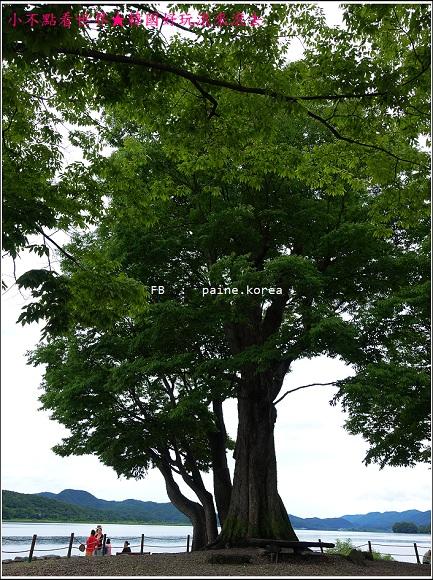京畿道 兩水頭 洗美苑 (82).JPG