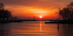 Bronte Creek Sunrise (Gavin Edmondstone) Tags: ontario sunrise oakville gx8 brontecreek cans2s