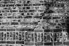 La fissure (hobbyphoto18) Tags: blackandwhite bw france brick wall noiretblanc pentax nb crack brique blacknwhite mur nordpasdecalais fissure k50 pentaxk50