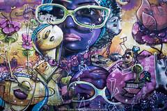 New York Street Art (jomak14) Tags: streetart newyork mural panasonic queens astoria g2 astoriaqueens microfourthirds wellingcourtmuralproject lumixgvario1442f3556