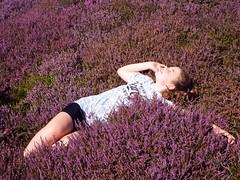 Heather P in the Purple Heather (alanpeacock2) Tags: granddaughter heather purple summer girls lordstones luckyheather ngc