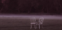 "J121/365  ""Solitude onirique"" (manon.ternes) Tags: pink paris girl rose project photography weird student photographie photos 365 fille bizarre personne chaise fort bois projet parisienne tudiante atmosphre 365days 365project projet365"