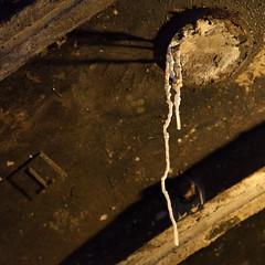 Calcium hydroxide stalactite | Charing Cross Disused Station Tour-23 (Paul Dykes) Tags: uk england london underground tube tunnel paddington londonunderground tunnels publictransport charingcross creep 007 jamesbond londontransportmuseum spooks hiddenlondon disusedstations skyfall disusedplatforms thor2 charingcrossdisusedstationtour calciumhydroxidestalactite