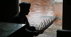 Side job..... (janetfo747 ~ Pray for Peace) Tags: green net river temple fishing north gray restaurants overcast vietnam job sidejob thaypagoda northvietnam sovillage