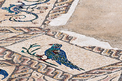 House of Birds Mosaic (simonevanbergen) Tags: tree architecture garden spring spain ruins roman mosaic seville structure italica svb romanemperor simonevanbergen